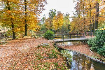 Waldteich mit Holzbrücke und herbstfarben im Herbst von Ben Schonewille