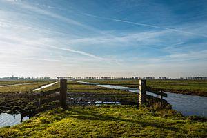 Weilanden in Noord Holland.