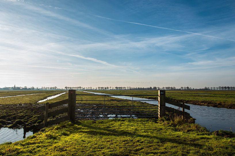 Weilanden in Noord Holland. van Brian Morgan