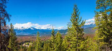 Uitzicht over vallei met Maligne Lake, Canada van Rietje Bulthuis