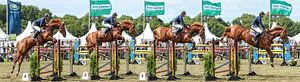 Sequence Jumping Horse