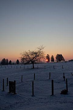 Winterlandschap in Malmedy 2 van