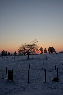 Winterlandschap in Malmedy 2 van Christophe Fruyt