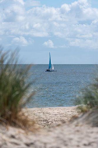 Catamaran op de Waddenzee van