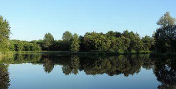 Bomen spiegelend in een visvijver, Hollandscheveld. von Wim vd Neut