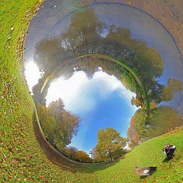 Rohrpanorama mit Nilgänse im Park, Rotterdam  von