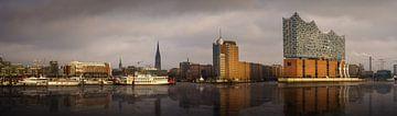 Panorama de la ligne d'horizon de Hambourg avec reflet sur Jonas Weinitschke