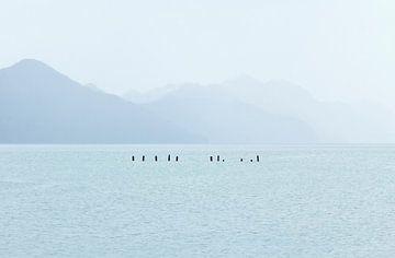 Minimalistische Landschaft von Nathan Marcusse