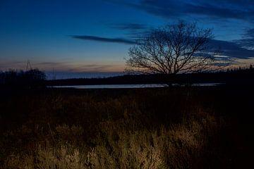 Esmeer bij nacht van Stijn de Jong
