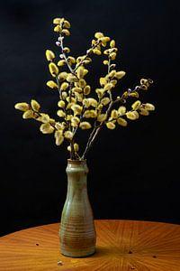 Stillleben von Weidenkätzchen in Vase
