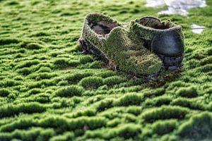Schoenen met mos - verlaten plaats van