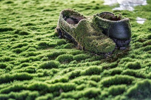 Schoenen met mos - verlaten plaats