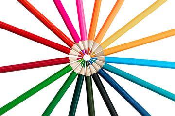 Farbstifte in einer Runde auf weißem Hintergrund von Elly Damen