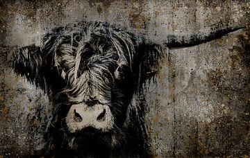 Fine Art Kuh Porträt von Moorhuhn Highlander Kunst von KB Design & Photography (Karen Brouwer)