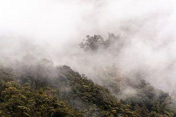 Mistige bergtoppen in Doubtful Sound, Nieuw-Zeeland van Lisanne de Beun