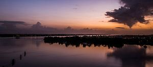 Sunrise at Suriname