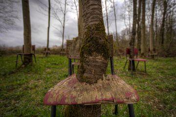 Verlaten Stoelen In Het Landschap   (475780) van Wesley Van Vijfeijken