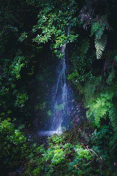 Wasserfall auf Madeira von jonathan Le Blanc