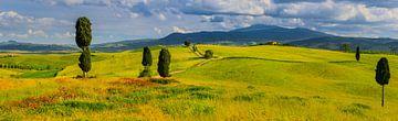 Panorama Agriturismo Terrapille, Val d'Orcia, Toskana, Italien von Henk Meijer Photography