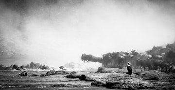 Oversteek van de Wildebeest van Van Renselaar Fotografie