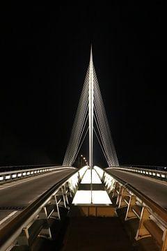 Calatrava van Iwan van den Hooff