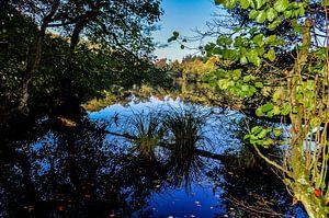 Hertasee im Nationalpark Jasmund