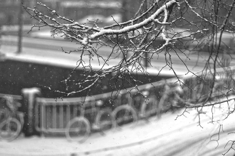 Amsterdam winter sneeuw  van Marianna Pobedimova