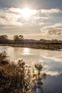 Oude Kooi Vlieland