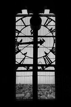 Tic tock, it's pigeon o'clock. sur Elianne van Turennout