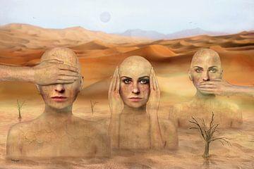 Drie vrouwen in de woestijn, niets zien, niets horen, niets zeggen... van Stefan teddynash