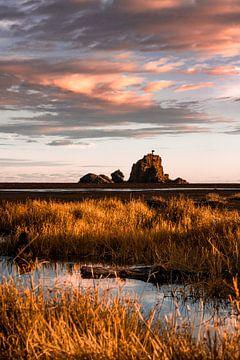 Op een zwart zand strand tijdens het gouden uur van Niels Rurenga