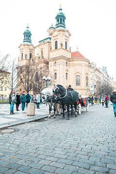 Pferde auf dem Alten Platz in Prag von Robin Polderman