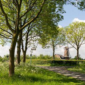 Die Mühle Rhein und Weert in Werkhoven von Marijke van Eijkeren