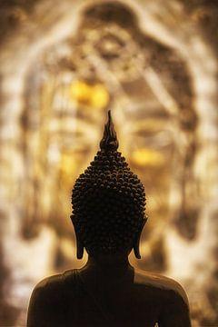 Oog in oog met Boeddha