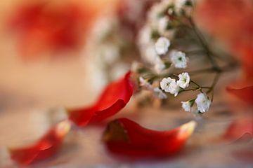 Florale Stillleben sur