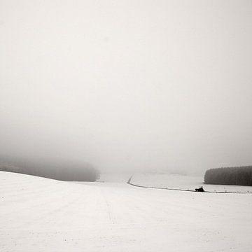 Foggy Snowscape von Lena Weisbek