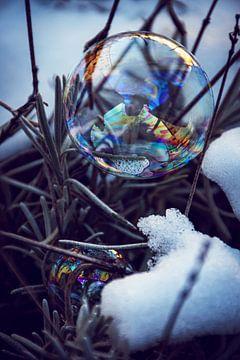 De winter komt eraan van D.R.Fotografie