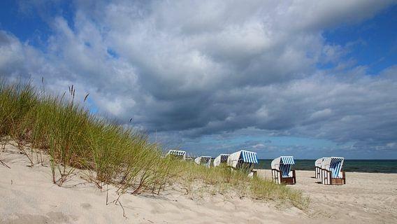 Ostseestrand van Ostsee Bilder
