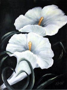 Witte Calla - Bloemen hand beschilderd