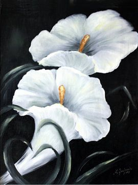 Blanche Calla - Fleurs peint à la main sur Marita Zacharias
