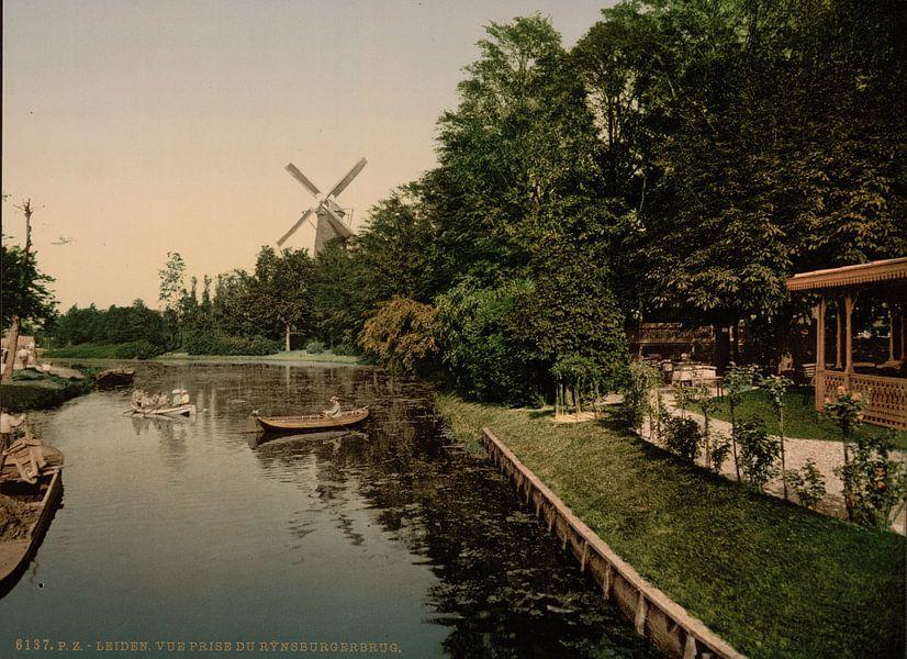 Rijnsburgerburg, Leiden van Vintage Afbeeldingen