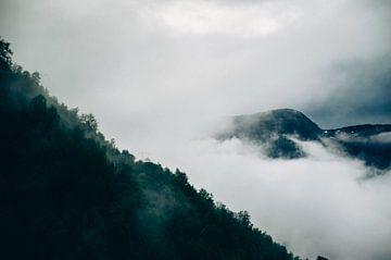 Prachtig uitzicht in Røldal van Lisa Vollebregt