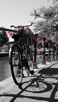 Amsterdam Rouge sur Tim Briers