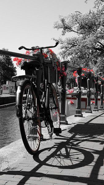 Rood Amsterdam van Tim Briers