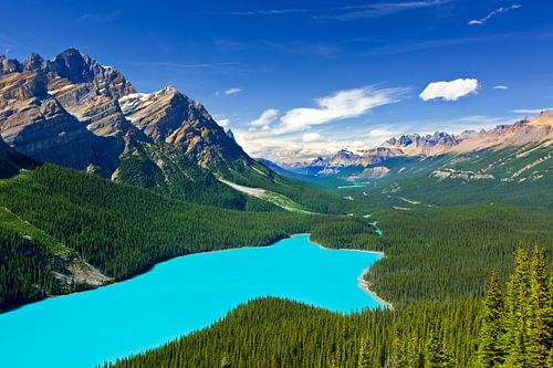 Peyto Lake in Banff N.P, Alberta, Canada van Henk Meijer Photography