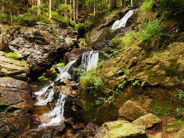 Riesloch watervallen bij Bodenmais, Beieren 14 van Jörg Hausmann