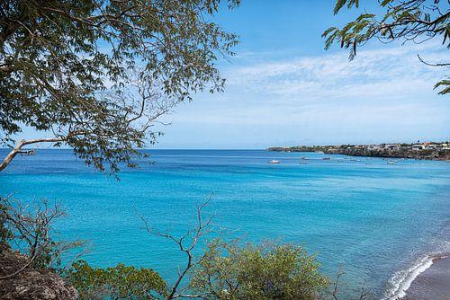 Uitzicht op de baai van Playa Grandi van Bart De Brabander