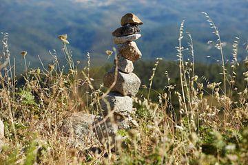 Stone van Bart Colson