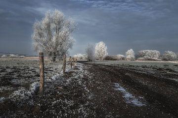 De weg naar - Road to ......... van Jos Reimering