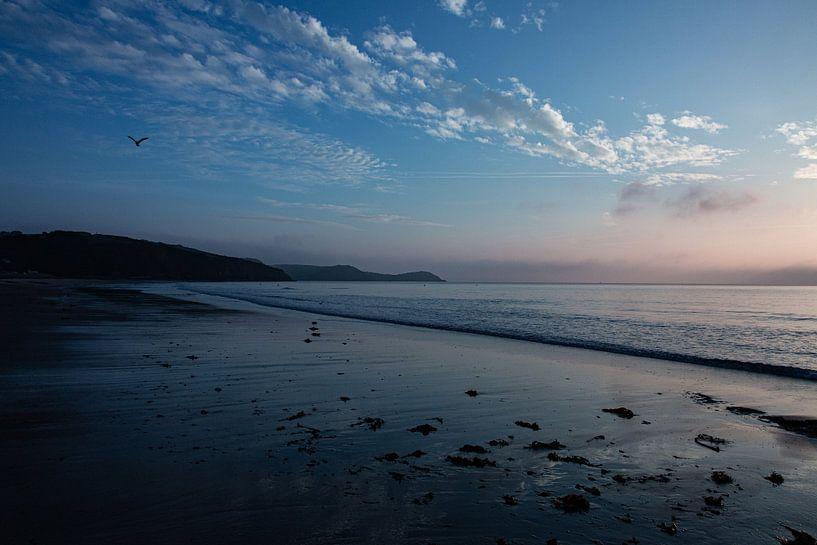 Zuid west kust van Engeland met vogel van Anneke Hooijer